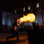 barmanská show na svatbu, fire show na svatbu